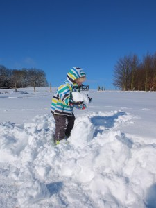 Der Wolf baut Schneegespenster